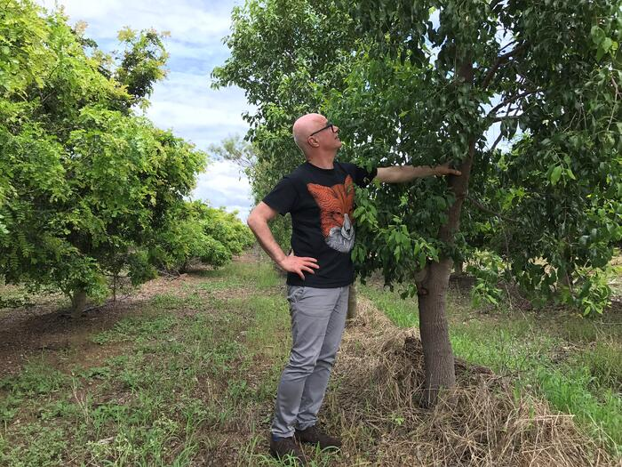 Bertrand Duchaufour, tree